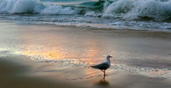Belongil Beach sunset 3 - May 2013
