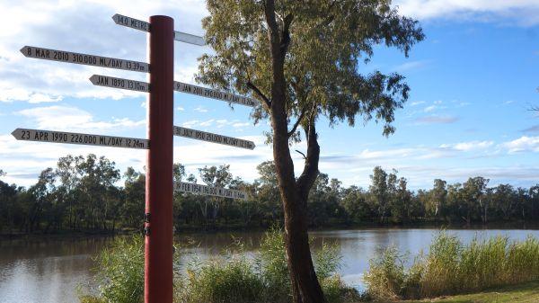 Flood levels - Balonne River