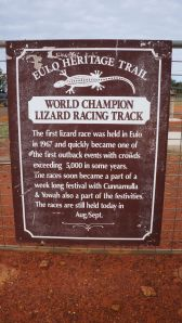 Lizard Racing Track