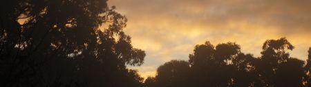morning - sun