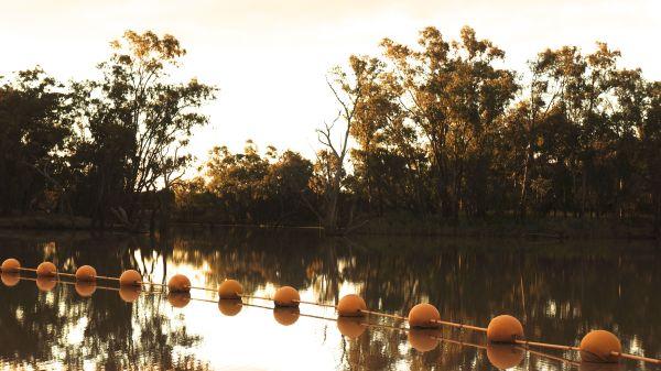 Weir buoys 2