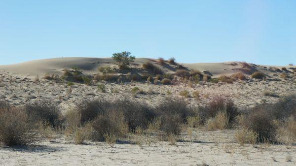 Birdsville Track - sand hills