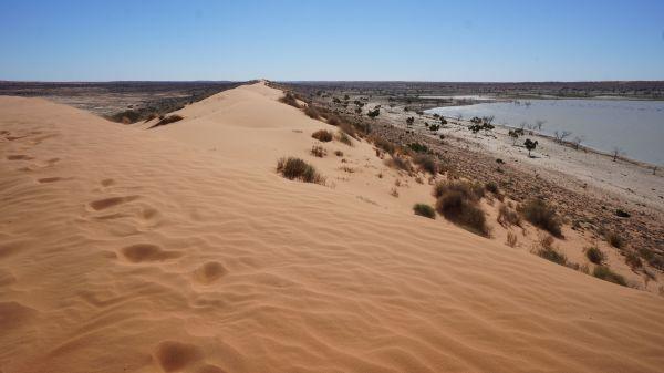 dune view 1