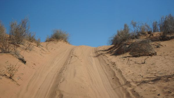 heading up the dune