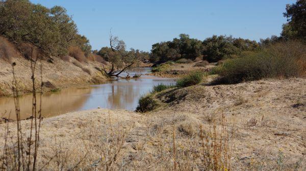 Jardine's waterhole - Birdsville