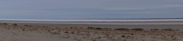 Morning on Lake Eyre
