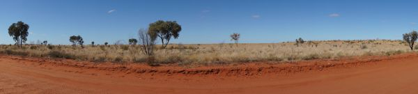 on the road to Birdsville Tues