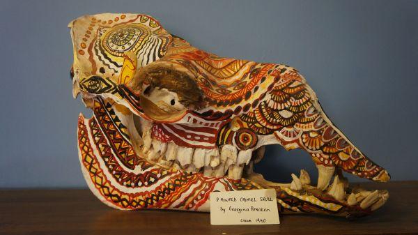 Painted Camel Head - Oodnadatta Railway Museum