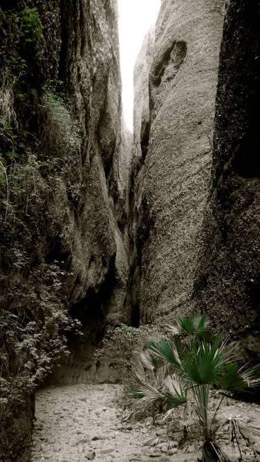 Purnululu - Echidna Gorge