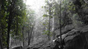 1 Aug - behind Little Merten Falls