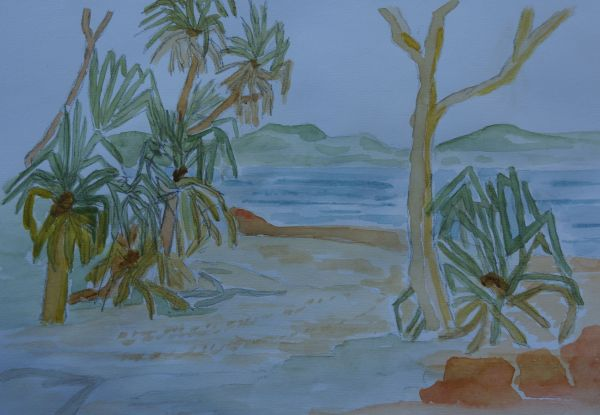 3 Aug - pandanus on the estuary - McGowan's