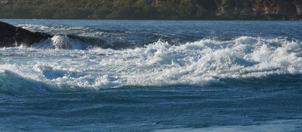 giant tides 5