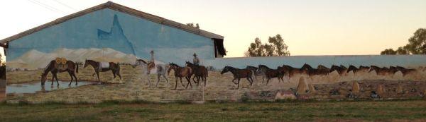 Camooweal mural