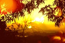 sunrise over Stradbroke Island -Turin effect