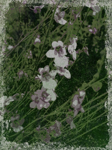 Cottage garden - Grungetastic - Pop Grunge 20 variation #2