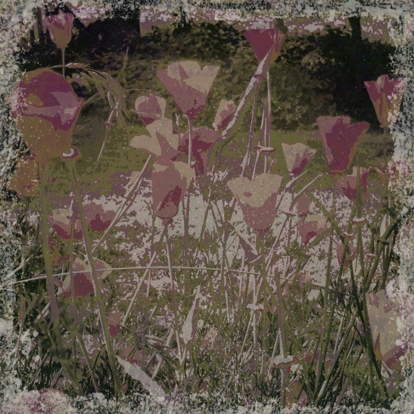 Cottage garden - Grungetastic - Pop Grunge 20 variation