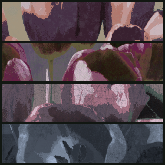 Diptic Tulips 2