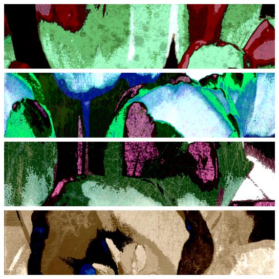 Solarised Diptic - Tulips