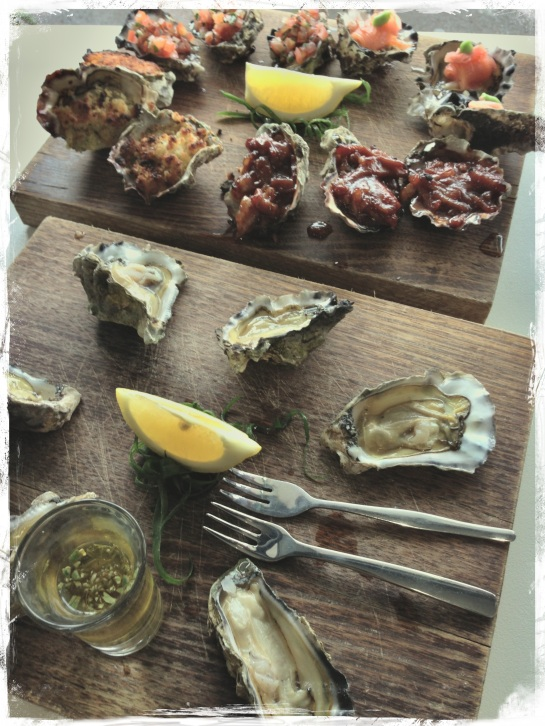 Oyster selection - FX Warm