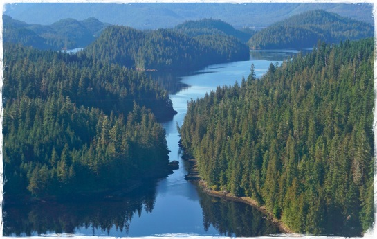 2  Tongass Forest from float plane - 26 Sep 2014