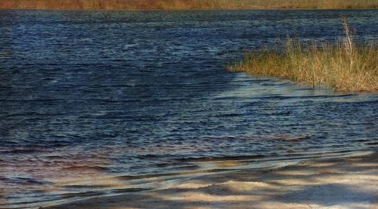 Brown Lake - Stradbroke Island 6 Sept 2014