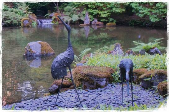 Cranes - Japanese Garden - Portland 20 Sept 2014