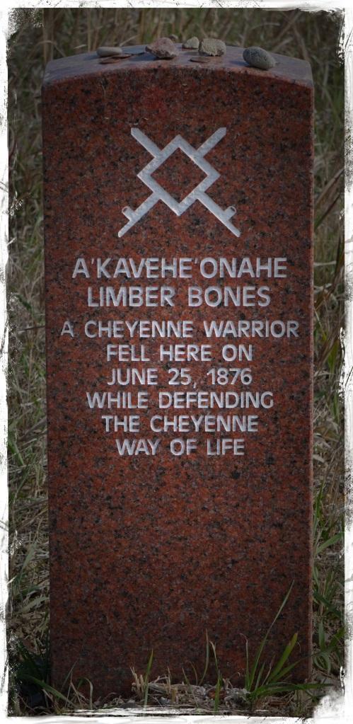 A Cheyenne Warrior 1