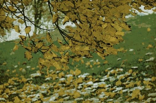 Autumn 3 Pop Grunge 07