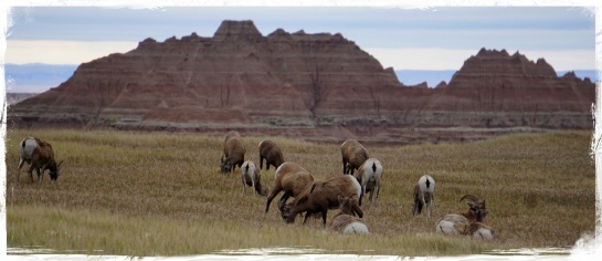 Badlands landscape 7