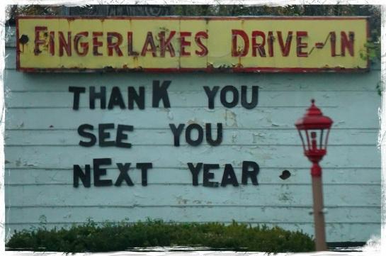 Fingerlakes district 1