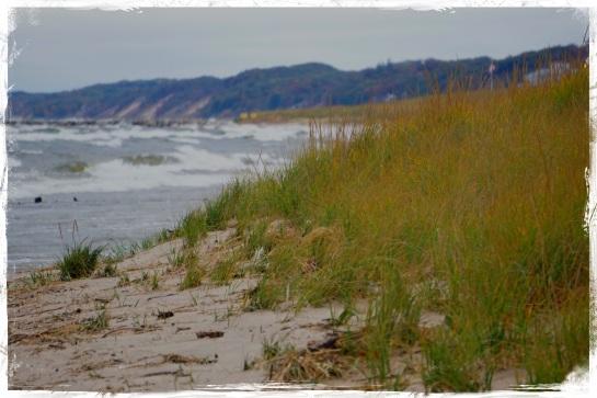 Oval Beach - Saugatuck 2