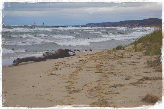 Oval Beach - Saugatuck 3