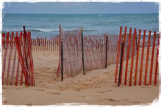 Oval Beach - Saugatuck 4