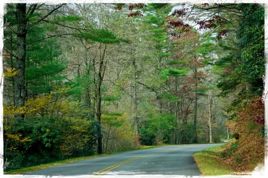 Blue Ridge Parkway again