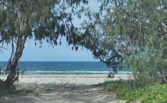 entry to Flinders Beach 21 Jan 15