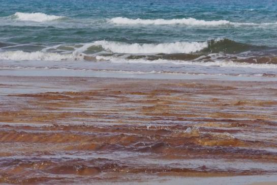 freshwater runoff onto Flinders - 21 Jan 15