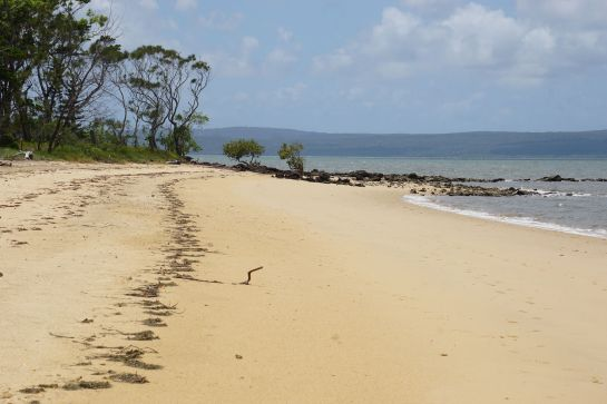 Coochimudlo Island 1