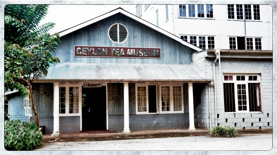 Ceylon Tea Museum - 1