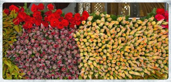 Chaukhtatgyi Paya - Yangon - roses