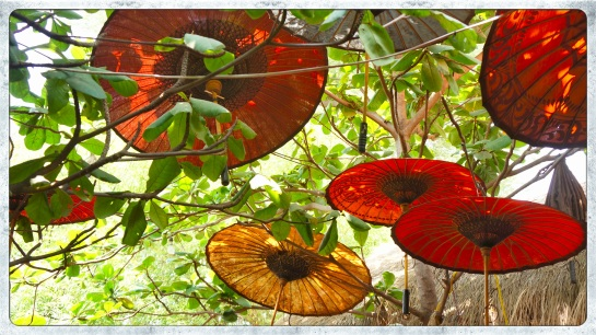 Moon Restaurant - garden parasols