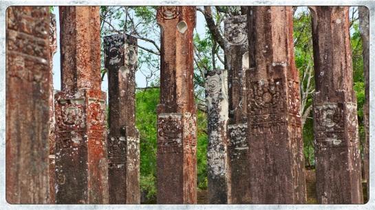 Pollonaruwa Archaeological Sites 5