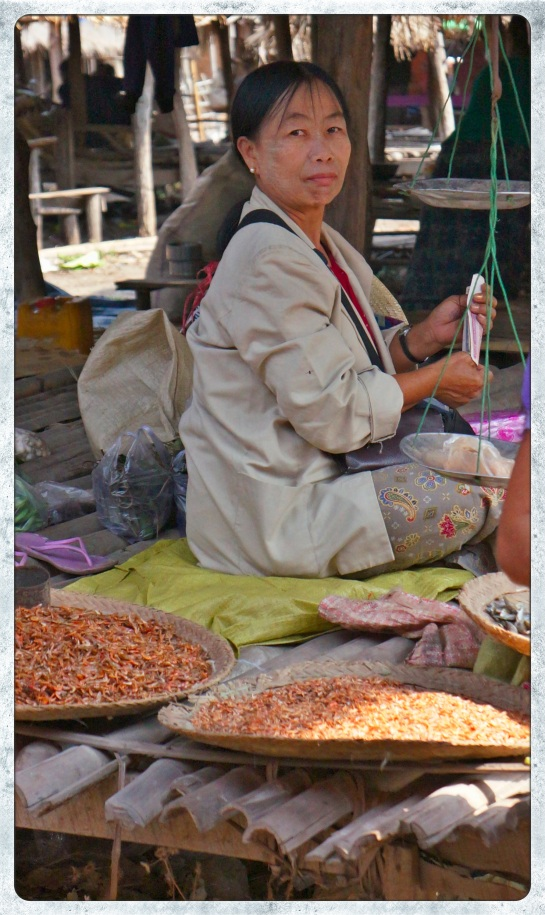 woman selling dried fish - Hmaw Be market