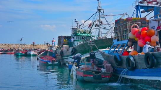 El Jadida fish market 3