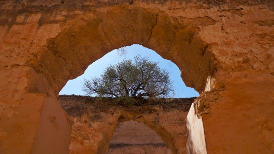 Heri es-Souani 1 - granaries and stables