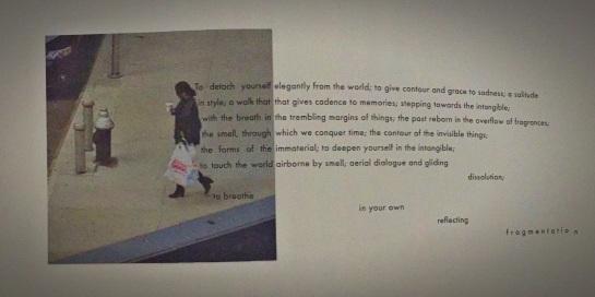 Emil Cioran - O Livro das Ilusoes
