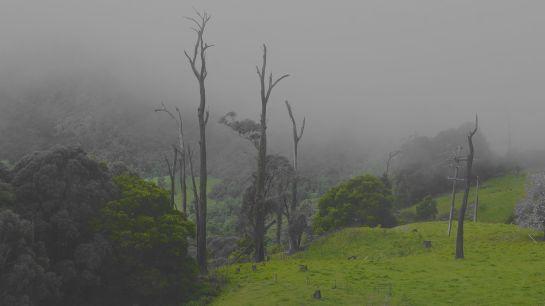 Sydney roadtrip Ap:May 2016 - CEW 30th