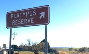 Platypus Reserve - sign
