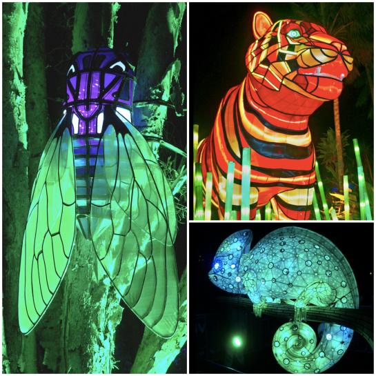 Vivid - Diptic 2 - Taronga Zoo