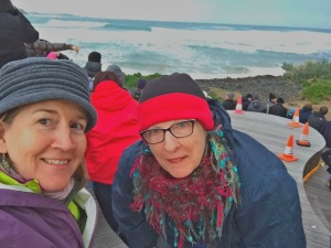 Waiting for penguins - 11 June 2016