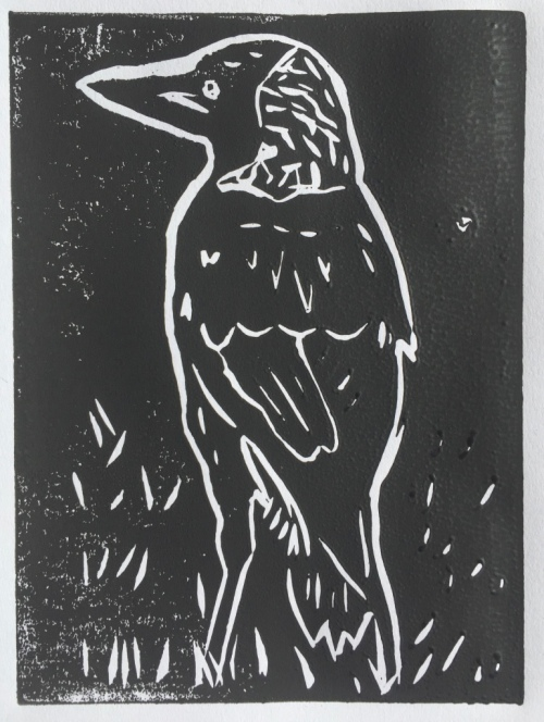 Magpie at Oyster Point - black ink - linocut